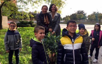 """""""Festa dell'Albero"""": a Pontecagnano e Castel San Giorgio si piantano alberi"""