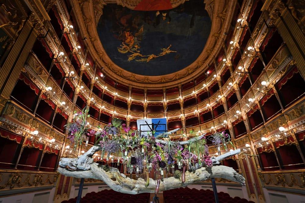 """Concorso floreale in memoria di Ezio Bosso: al """"Verdi"""" l'opera di Carrella"""