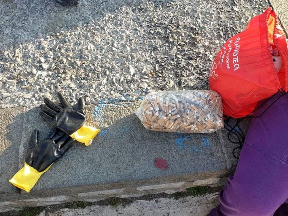 Natura, mare, senso civico: i volontari ripuliscono il Molo Masuccio