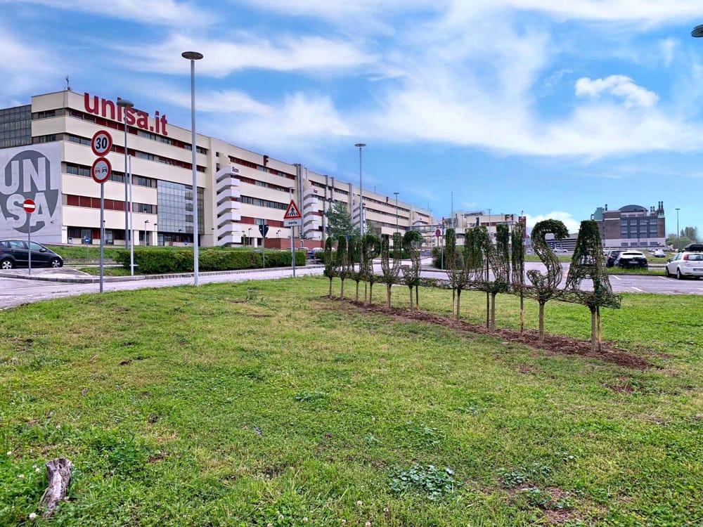 QS World University Rankings 2021: l'Ateneo di Salerno tra le prime 1000 università del mondo