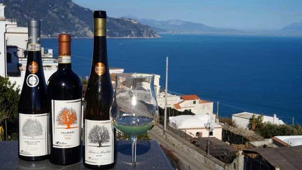 Il vino irpino per i salernitani, l'omaggio della Cantina Bellaria