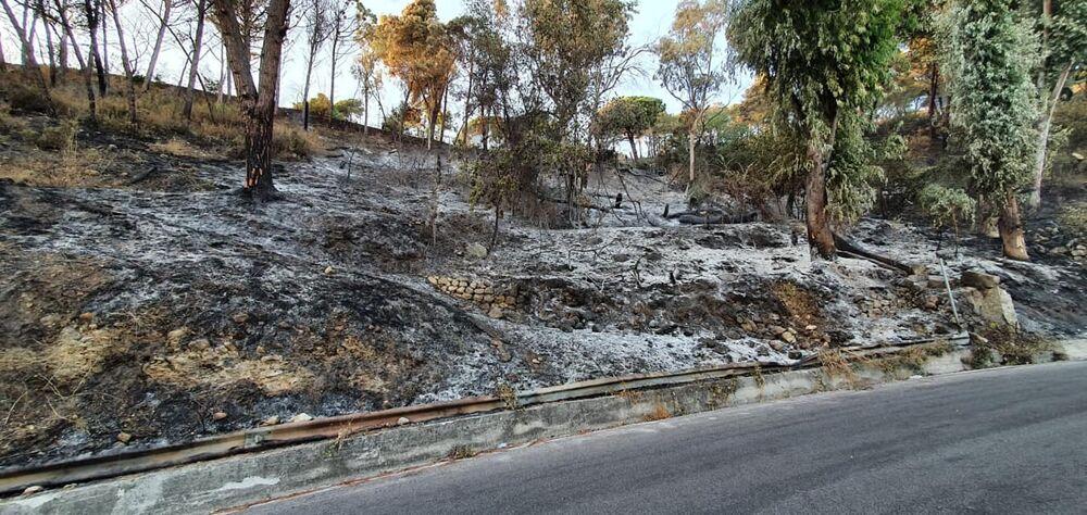 Incendi a Salerno: il verde è solo un ricordo, il sopralluogo del sindaco e della Protezione Civile