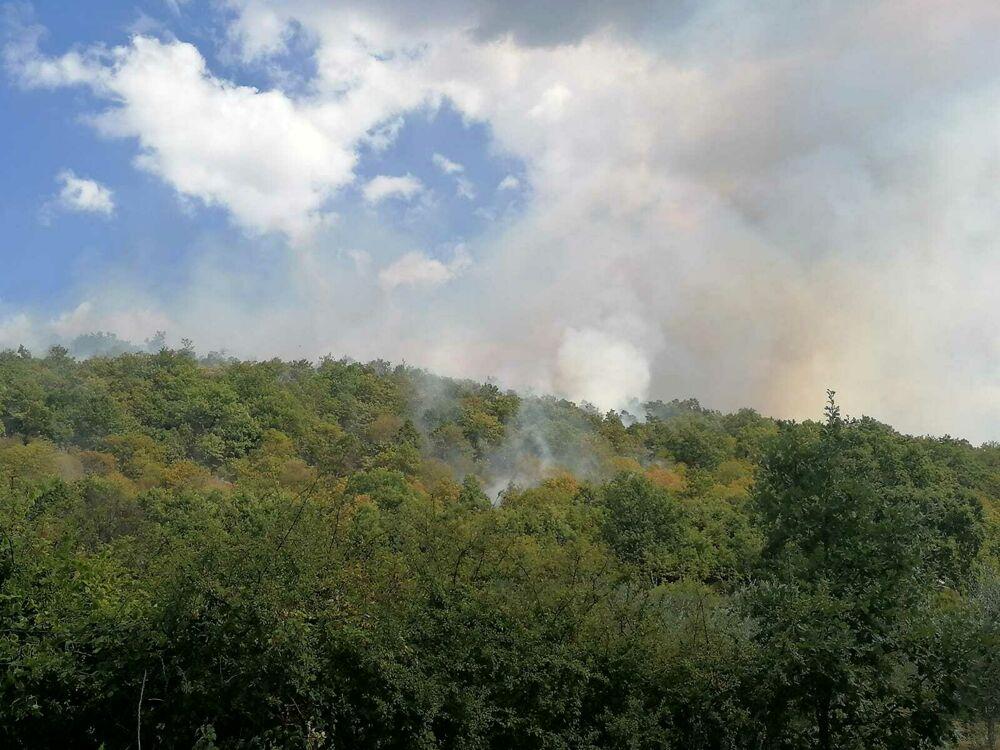 La provincia che brucia: fuoco e fiamme ad Atena Lucana