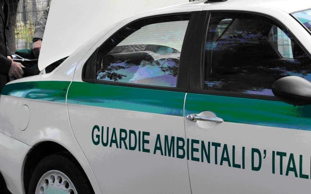 Rifiuti abbandonati a Battipaglia: verbali per 3mila euro, il blitz delle Guardie Ambientali