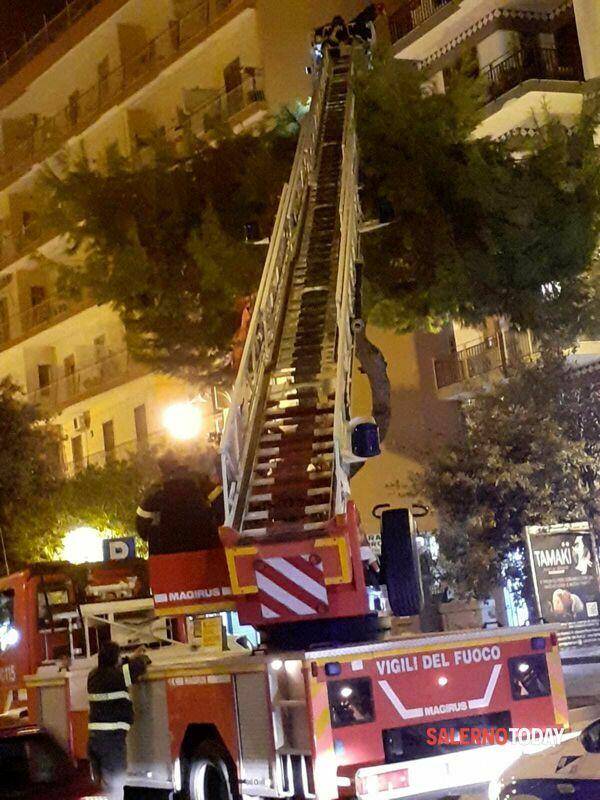 Albero pericolante a Torrione: arrivano i vigili del fuoco
