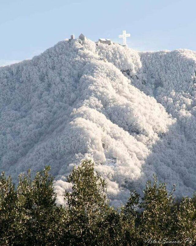 Il Monte Sacro di Novi Velia si tinge di bianco: lo scatto diventa virale