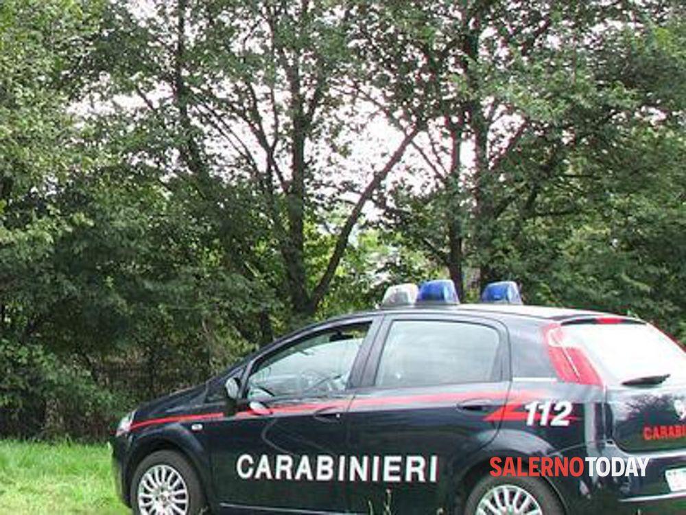 Evita una capra e rischia di finire in una scarpata: incidente a Caselle in Pittari
