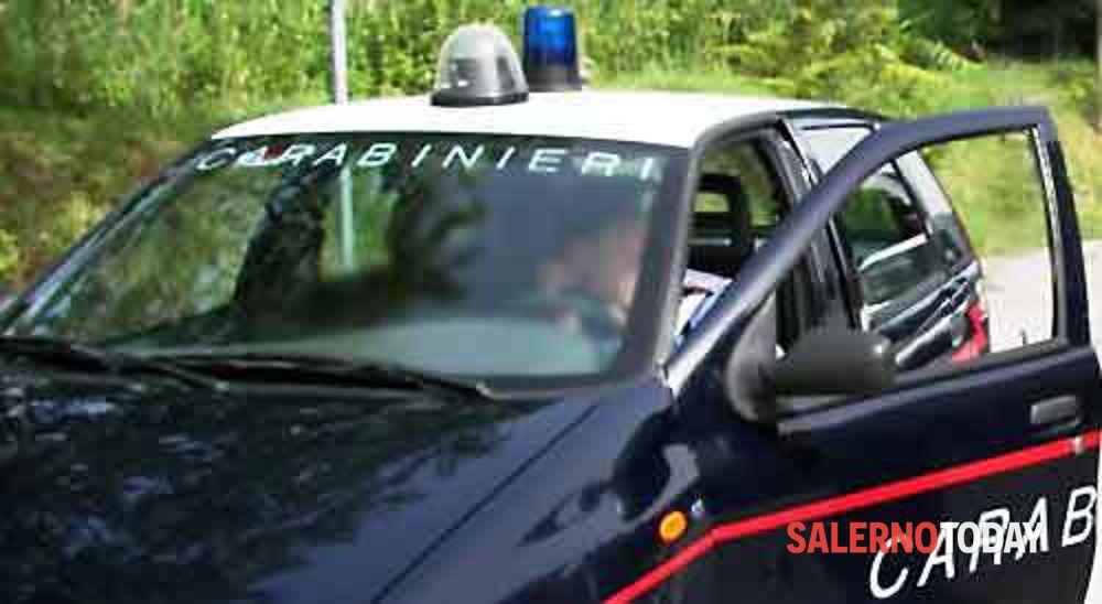 Smaltimento illecito in un'azienda bufalina: denunciato il responsabile, scatta anche il sequestro