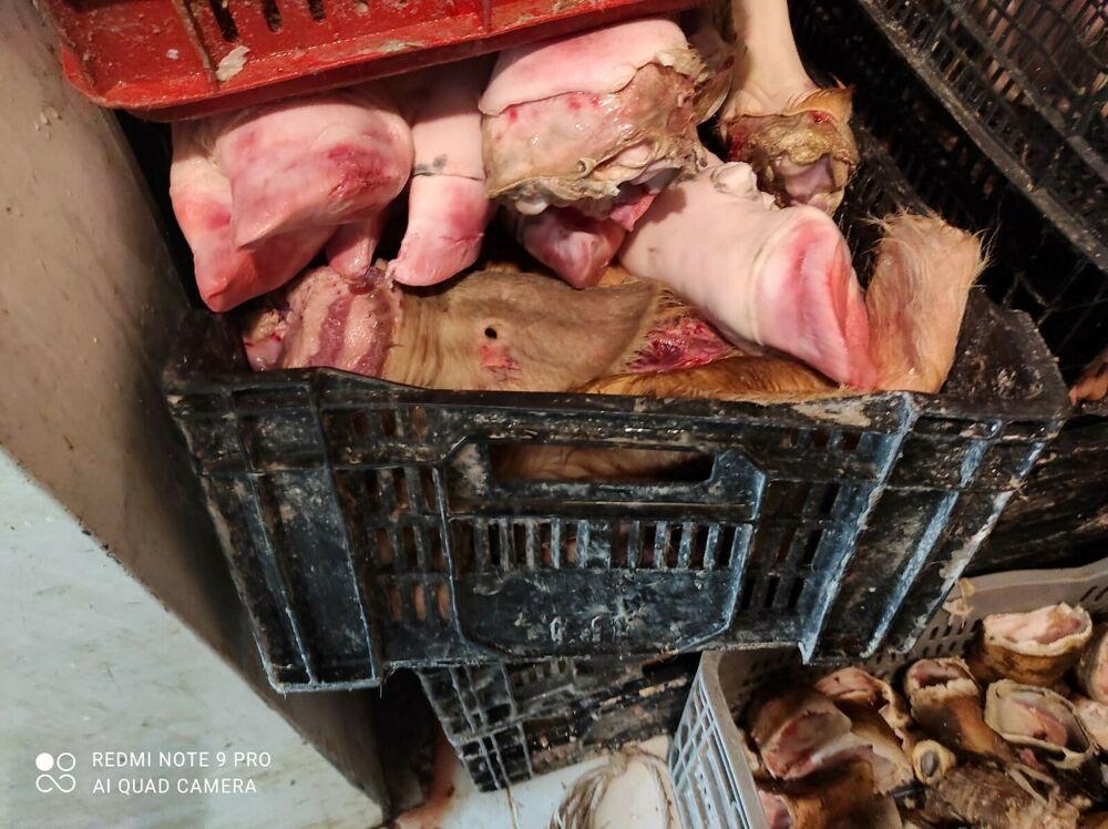 Carne non tracciabile e smaltimento illecito di rifiuti: denuncia e sequestro a Pagani