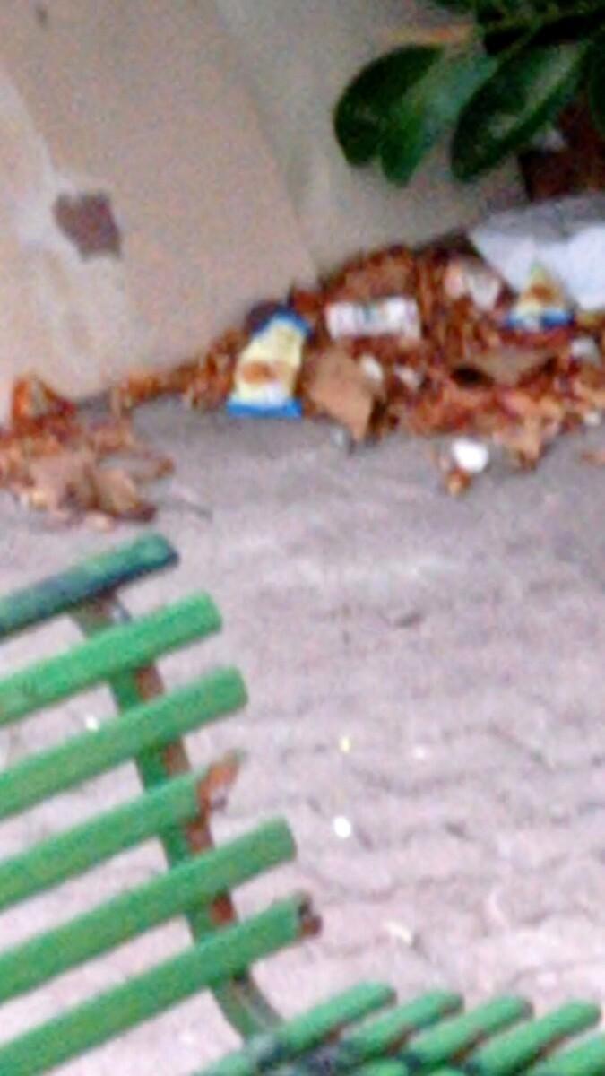 """""""Lo spazzino non passa mail"""": la segnalazione di un residente di via Calatafimi"""