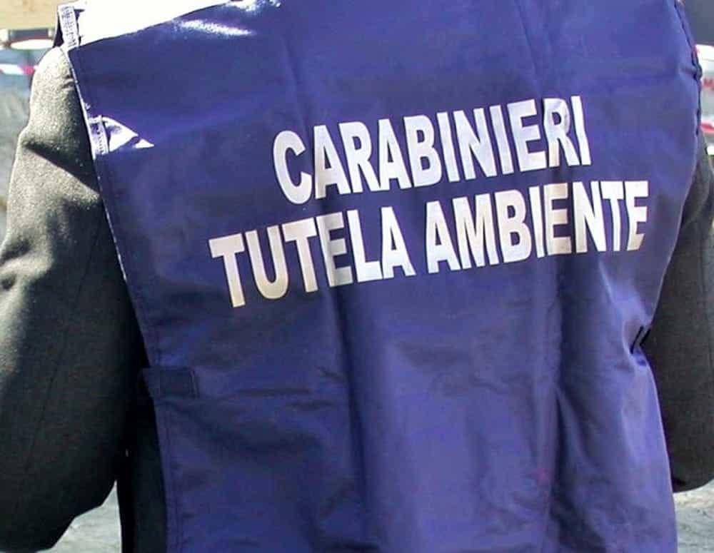 Scarico abusivo di reflui nel fiume Sarno: sequestrata azienda conserviera a Sant'Egidio