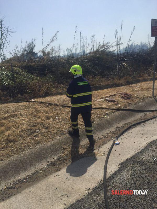 Il Cilento continua a bruciare: nuovi incendi da Castellabate a Palinuro