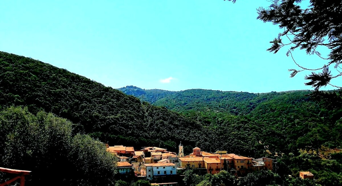 Il festival in movimento incontra le comunità del Cilento : le tappe del XXIV Mediterraneo Video Festival